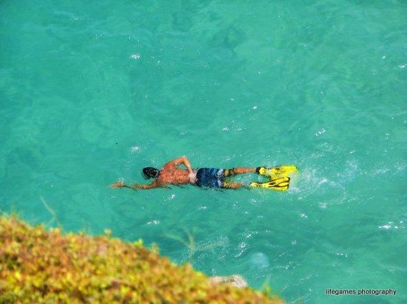 snorkeling-at-south-stradbroke-island