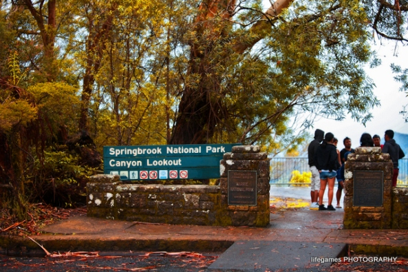 how to go to springbrook national park from nerang