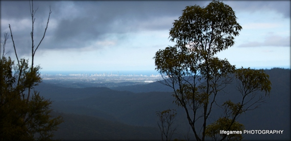 view-of-the-gold-coast-from-springbrook-national-park