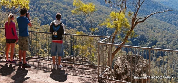 springbrook-national-park-people-at-lookout